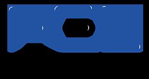 Fel Avionics Logo